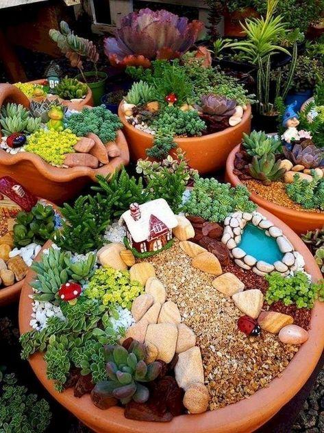 วิธีจัดสวนในกระถาง